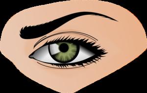iris-154659_640